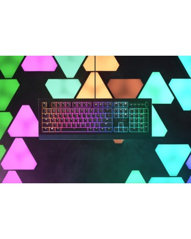 icecat_Razer Cynosa V2 Chroma Keyboard, RZ03-03400400-R3G1